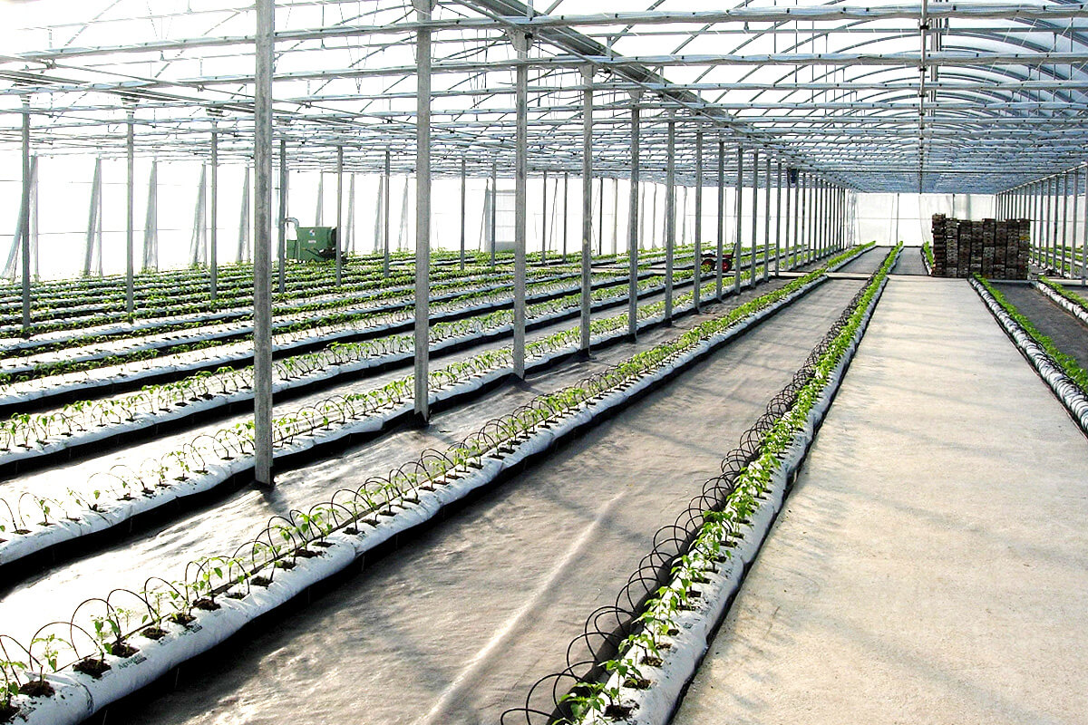 Fertigation for greenhouses