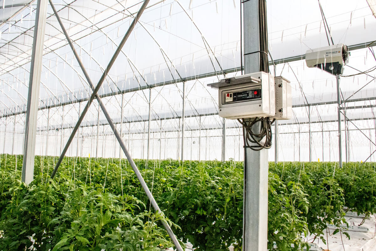 Climate control for greenhouses