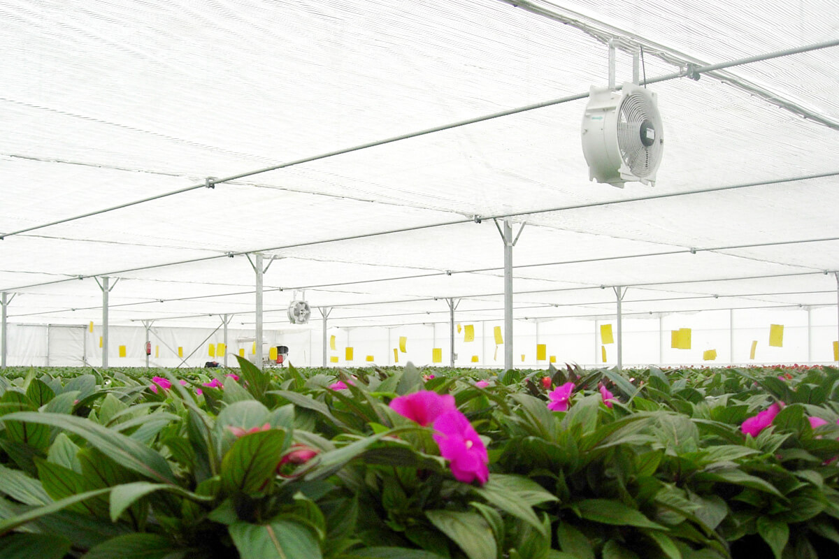 Air circulation fans for greenhouses