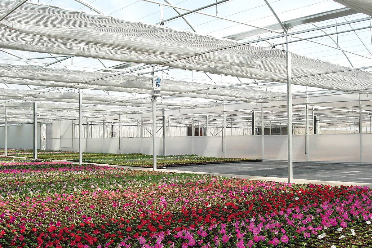 Screens for greenhouses