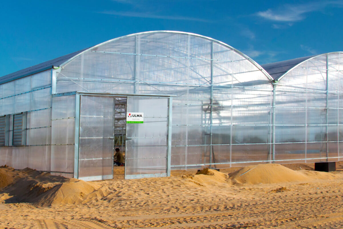 ULMA Agrícola has installed greenhouses in the desert